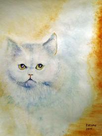 Katze, Natur, Tierportrait, Aquarellmalerei