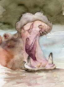Flusspferd aquarell aweis, Aquarell, Figural, Flusspferd