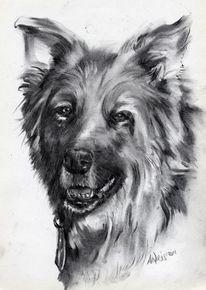 Hund kohle aweis, Zeichnungen, Tiere, Schäferhund