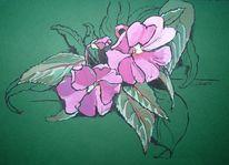 Grün, Fleißige lieschen, Blüte, Blumen