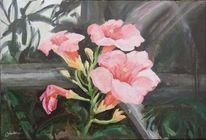 Blumen, Rosa, Blüten, Wachsen