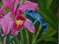 Orchidee, Blüte, Frosch, Malerei