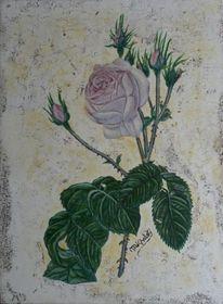 Blumen, Blüte, Rose, Malerei