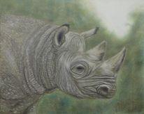 Nashorn, Malerei, Tiere