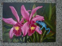 Cattleya, Frosch, Dendrobates, Orchidee