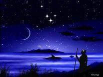 Stern, Tiere, Universum, Mond