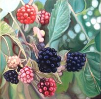 Früchte, Pflanzen, Grün, Brombeere