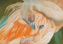 Flamingo, Aprikose, Tiere, Malerei