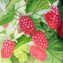 Pflanzen, Früchte, Pink, Himbeere