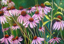 Grün, Blumen, Frühlingswiese, Pink
