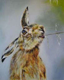 Tierportrait, Tiere, Hase, Malerei