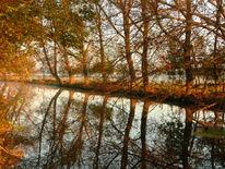 Herbstlandschaft, Fotografie