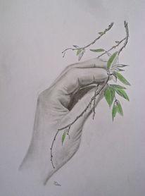 Grau, Zweig, Natur, Hand