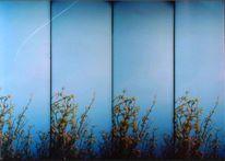 Analog, Blau, Himmel, Flugzeug