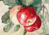 Aquarellmalerei, Zweig, Obst, Apfel