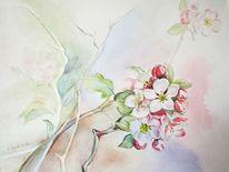 Aquarellmalerei, Blüte, Frühling, Zweig