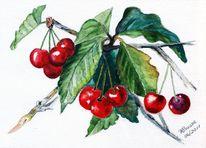 Obst, Stillleben, Aquarellmalerei, Kirsche
