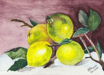 Gelb, Stillleben, Zitrone, Aquarellmalerei