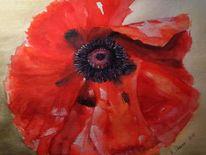Rot, Aquarellmalerei, Blumen, Blüte