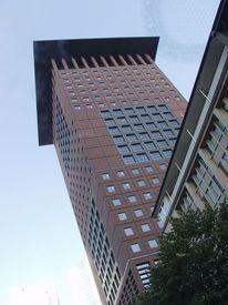 Japanhaus, Frankfurt am main, Fotografie, Architektur