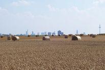 Frankfurt am main, Heuballen, Strohballen, Skyline