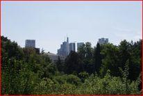 Hochhaus, Palmen, Frankfurt am main, Fotografie