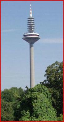 Palmen, Frankfurt am main, Spargel, Europaturm