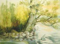 Baum, See, Wasser, Weide