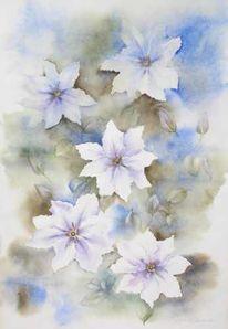 Blumen, Aquarellmalerei, Clematis, Aquarell
