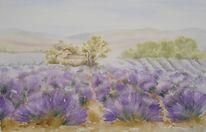 Lavendel aquarell, Aquarellmalerei, Landschaft, Provence