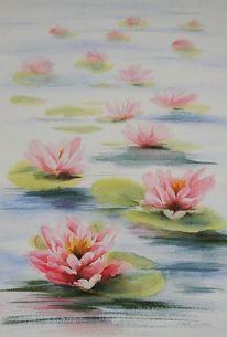 Seerosen, Teich, Aquarellmalerei, Aquarell