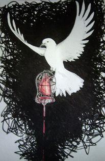 Vogel, Taube, Skizze, Zeichnungen