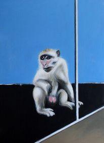 Isolation, Abgrenzung, Ape, Affe