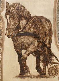 Arbeitspferd, Pyrografie, Holzrückepferd, Kaltblut