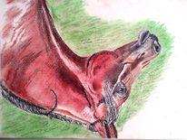 Kreide, Araber, Pferde, Pastellmalerei