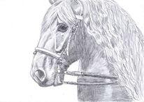 Friese, Pferde, Rappe, Zeichnung