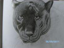 Bleistiftzeichnung, Panther, Zeichnungen