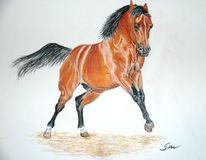 Pastellmalerei, Kreide, Pferde, Zeichnungen