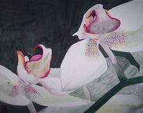 Floristik, Orchidee, Blumen, Malerei