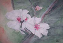 Pflaumenblüten, Aquarell