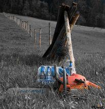 Baum, Fotografie, Werkzeug, Malerei