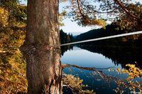 Wasser, Herbst, Fotografie