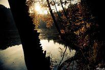 Herbst, Wasser, Fotografie, Schatten
