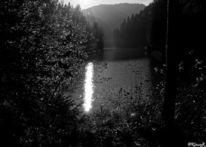 Wasser, Herbst, Fotografie, Schatten