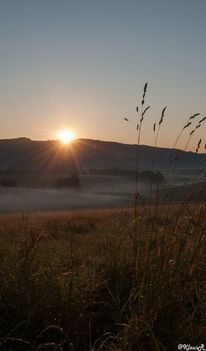 Sommer, Sonne, Sonnenaufgang, Fotografie
