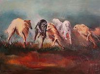 Jagd, Barsoi, Russischer windhund, Borsoi