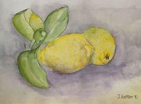 Stillleben, Früchte, Zitrone, Aquarell