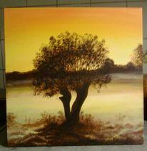 Sonnenaufgang, Weide, Malerei, Morgenstimmung