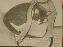 Rucksack, Tiere, Kater, Zeichnungen