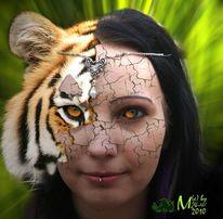 Digital, Menschen, Fotografie, Tiger